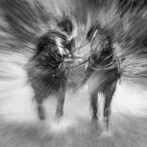 Slavko Hudák - Rýchlo a zbesilo