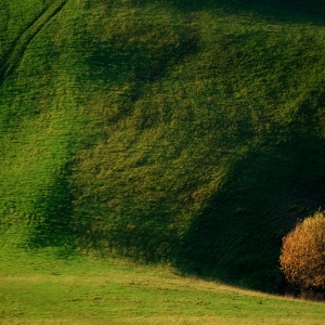 Z kopca